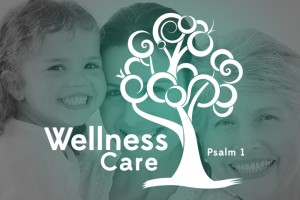 WellnessMinistry