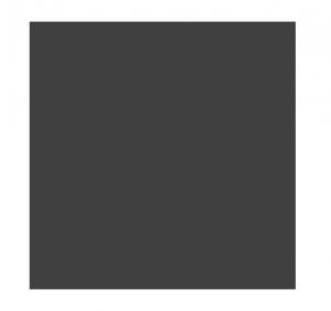 CWCMen_Logo_Grey
