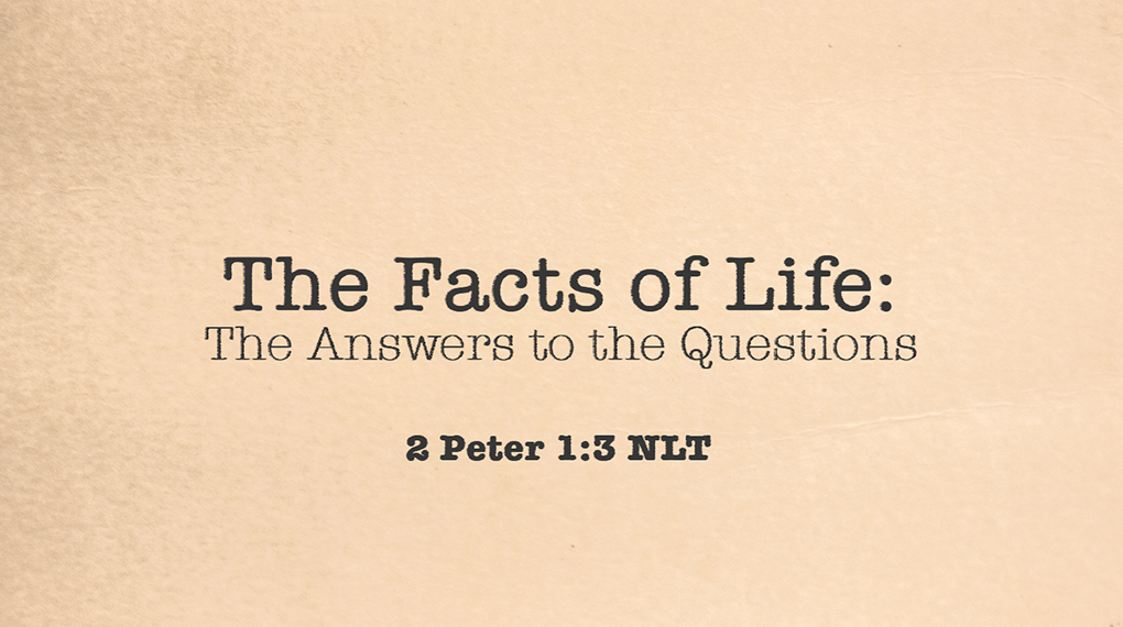 the-facts-of-life