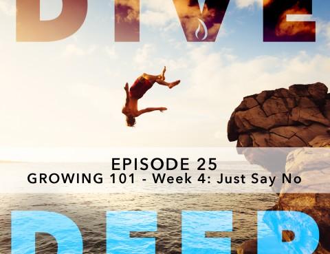 Dive Deep Podcast_Image25